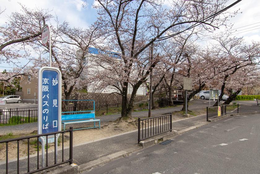 京阪バス「妙見口」バス停